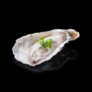 牡蠣 黑色背景倒影版本的去背退地食物素材相片