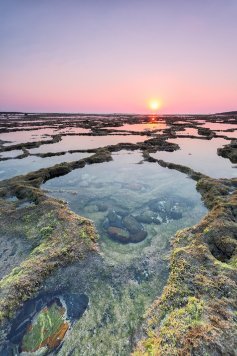 Bonsai Pool | Vilanova de Milfontes | © Timo Zilz