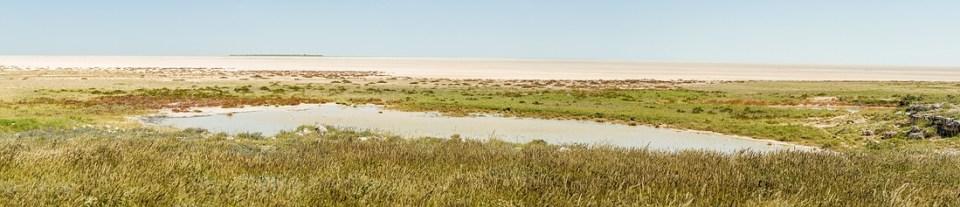 Die endlose Weiter der Etosha Salzpfanne © Raik Krotofil