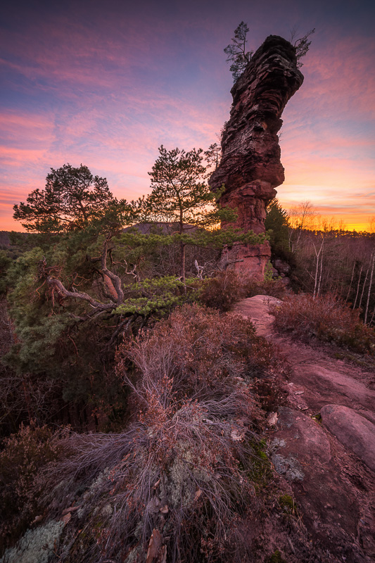 Felsenmonster Pfälzerwald Sonnenuntergang Dahn