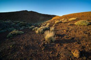 Teide Volcano © Raik Krotofil