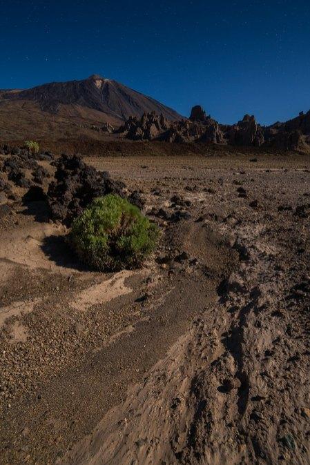 Teide Moonlight © Raik Krotofil