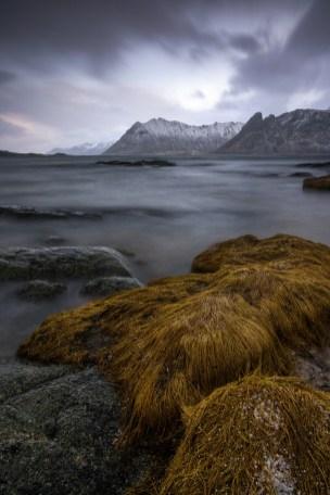 Fotoreise Gimsøy Kirke © Raik Krotofil, Lofoten, Winter, Schnee, Eis, Polarlicht, beste Fotoreise, Norwegen