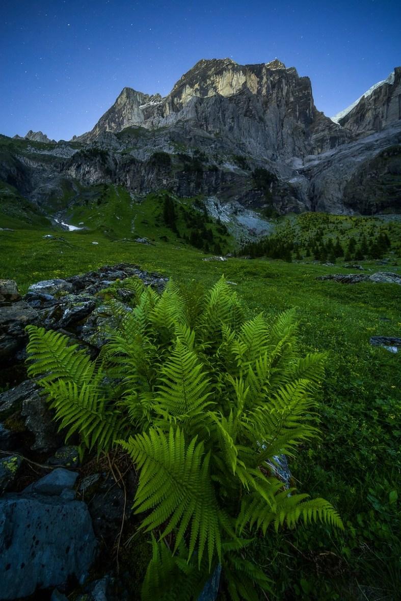 Fotografieren in den Bergen Rosenlaui Wellhorn © Raik Krotofil