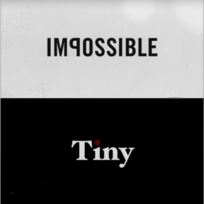 Impossible Project Tiny
