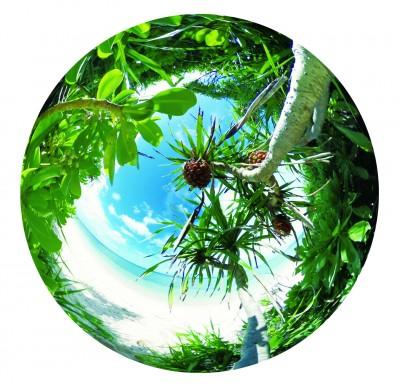 Ricoh Theta S Camera: Spherical Image Courtesy of Ricoh