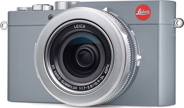 Solid Gray Leica D-Lux (Typ 109)