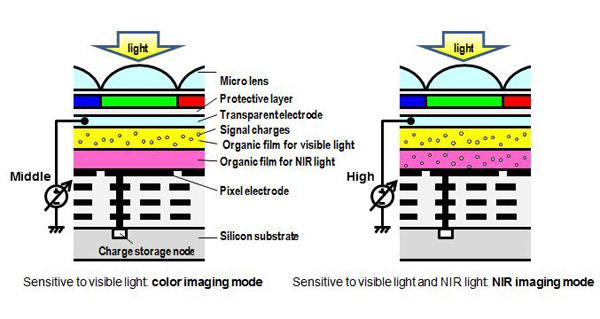 Fig.1 Cross-sectional image of stacked organic CMOS image sensor with the control of the sensitivity by changing the applied voltage.