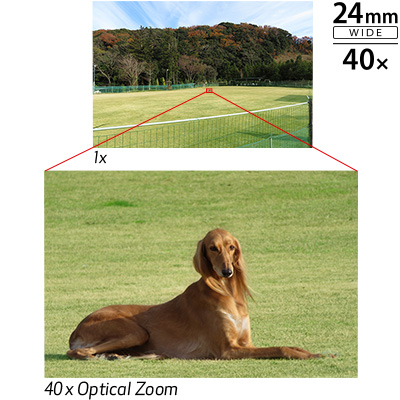 Powerful 40x Optical Zoom with Zoom Framing Assist: Image Courtesy of Canon