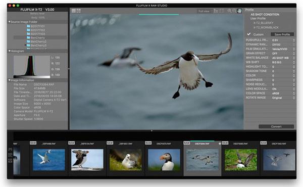 FUJIFILM X RAW STUDIO software: Image Courtesy of Fujifilm