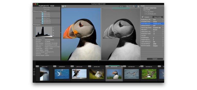Fujifilm X Raw Studio: Image Courtesy of Fujifilm
