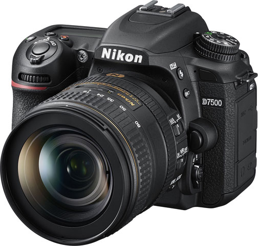 Nikon D7500 with AF-S DX NIKKOR 16-80mm f/2.8-4E ED VR