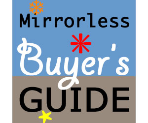 Mirrorless Buyer's Guide