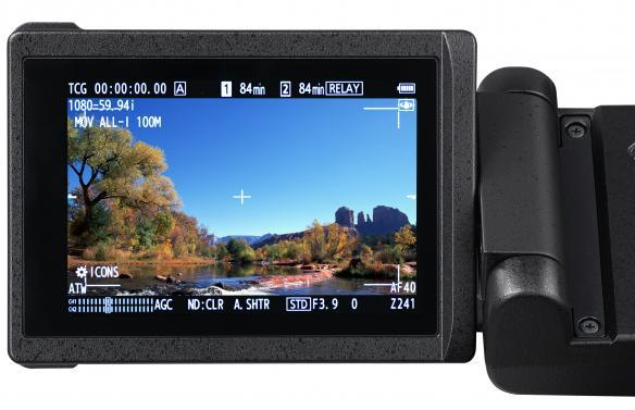 Panasonic AG-CX350, LCD: Image Courtesy of Panasonic