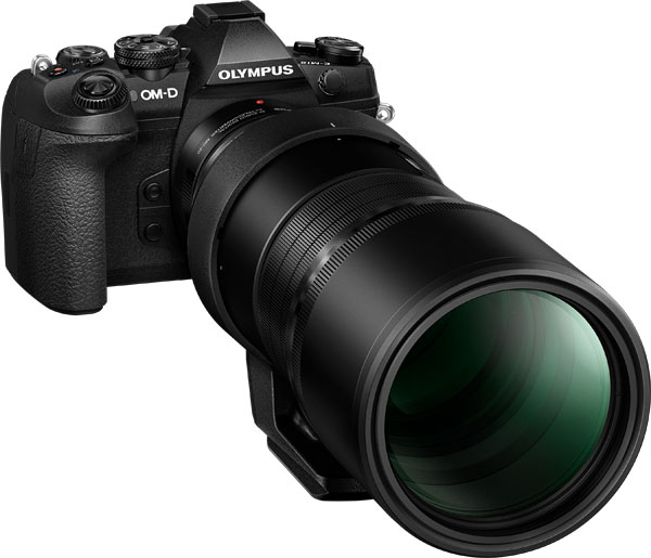 Olympus: M.Zuiko Digital ED 300mm F4.0 IS PRO Lens with M.Zuiko Digital 2x Teleconverter MC-20 and Olympus OM-D E-M1 Mark II Camera
