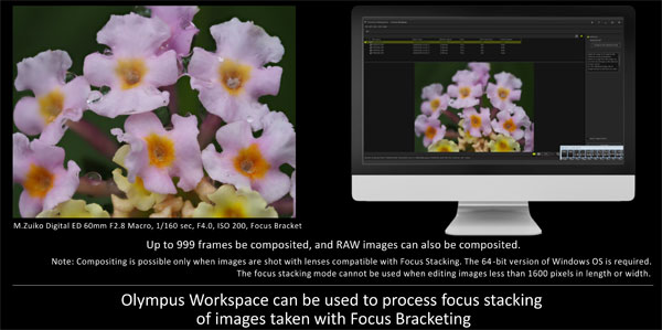 Olympus Workspace Image Editing Software Version 1.1: Images Courtesy of Olympus