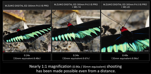 M.Zuiko Digital ED 300mm F4.0 IS PRO and the MC-20 (right) allows the user to shoot near actual size at 0.96x (35mm equivalent) from the maximum shooting magnification of 0.48x: Images Courtesy of Olympus