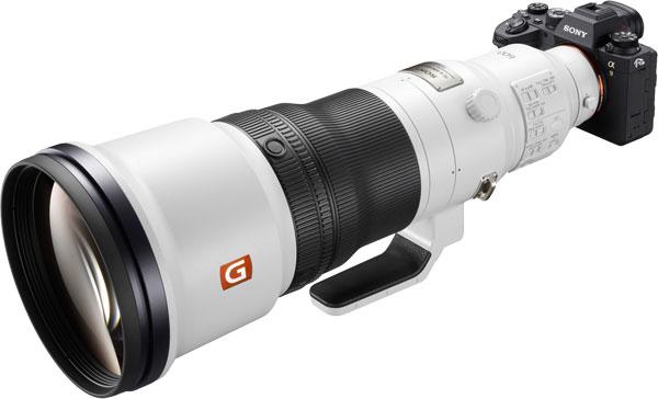 Sony Alpha 9 II with FE 600 mm F4 GM OSS lens