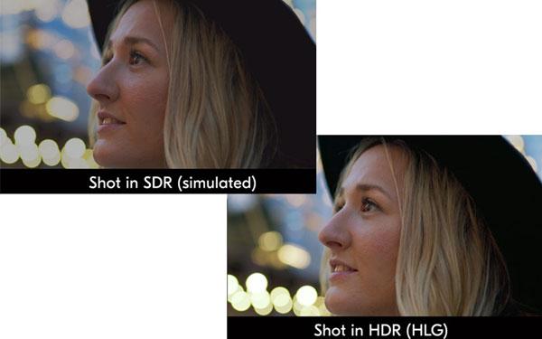 Nikon D780: Image Courtesy of Nikon