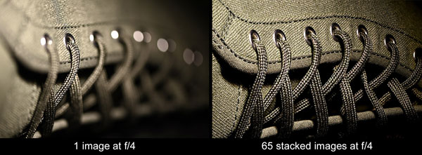 Nikon D6: Image Courtesy of Nikon:: Focus Shift Mode automatically takes a series of images while continuously adjusting the focus position (up to 300 shots).*  *Final image compositing requires third-party software.