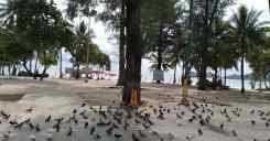 2020年07月29日のプーケット島・パトンビーチの風景