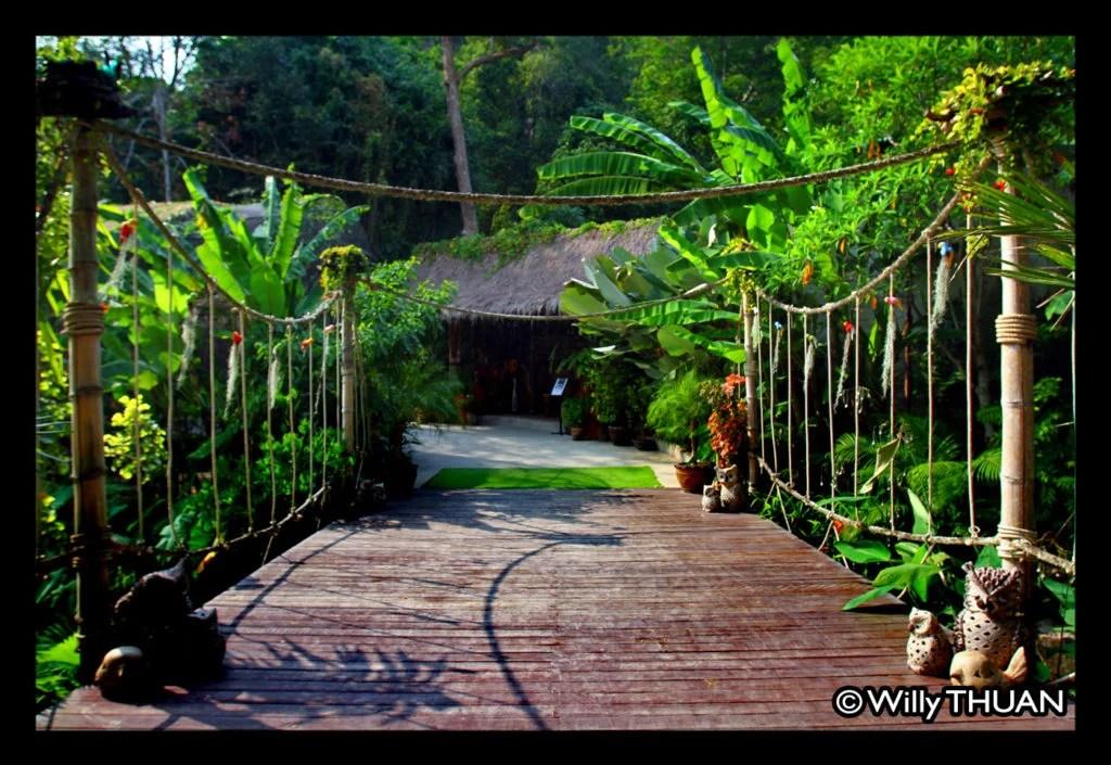 phuket-bird-park11
