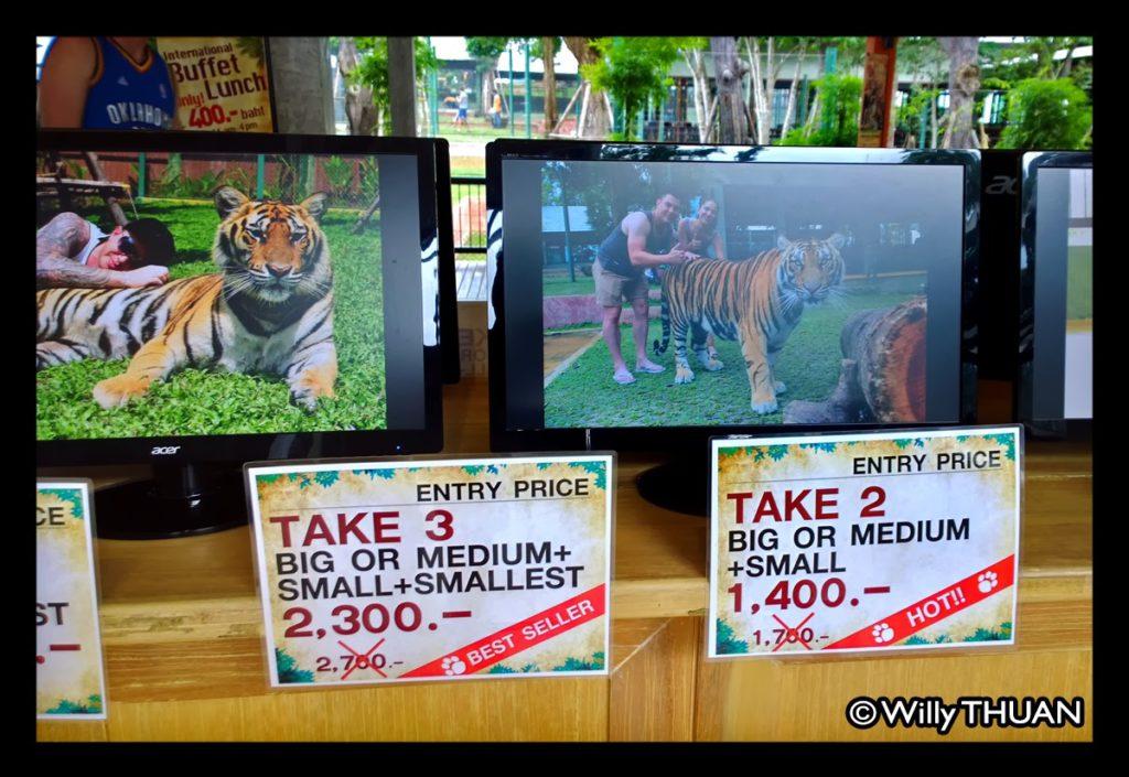Phuket Tiger Kingdom Prices