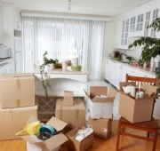 Move-In/Out Cleaning