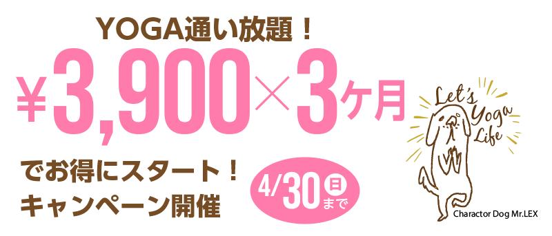 ヨガ入会 3900円スタートキャンペーン