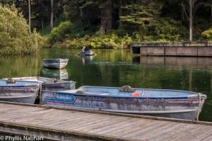 stow_lake_boathouse-012