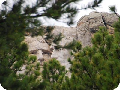 Mount Rushmore Trees