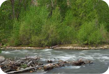 sun valley stream
