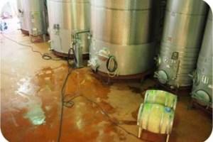 VML winery