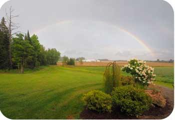 double rainbow farm