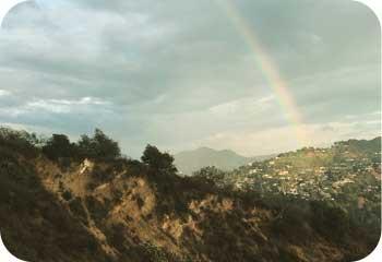 FOMO_rainbow
