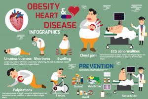 Obesity and heart disease infographic detail of symptoms obesity and heart disease with prevention. use for advertising brochure and template etc. vector Illustration.