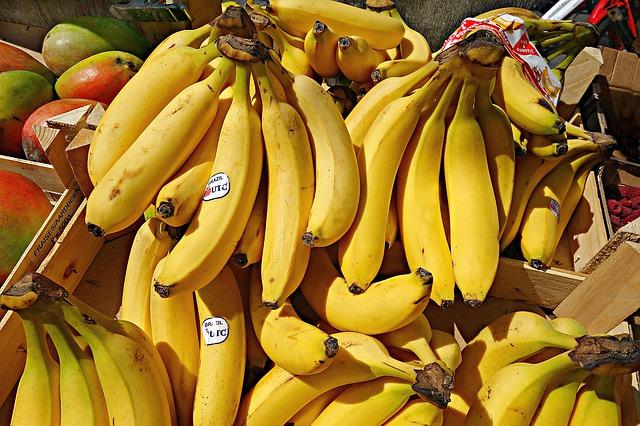 Un puissant champignon s'attaquant aux plantations de bananes