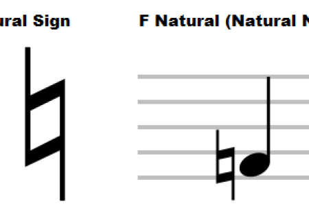 What Are Notations In Music 4k Pictures 4k Pictures Full Hq