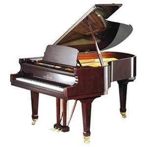 Bechstein B 190 1/2 queue noir en polyester