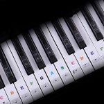 Outtybrave Autocollant pour Clavier de Piano 32 49 61 76 88 Touches – Apprendre la Musique débutants, Enfants Find Sight Reading System, PVC, coloré, 35 * 16MM/7 * 25MM