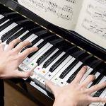 autocollant piano,Autocollants Amovibles de Piano,Autocollants de Clavier de Piano,Autocollants pour piano,partition piano debutant,pour 37/49/54/61/88 (Transparent)