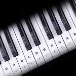 NANAD Lot de stickers pour clavier de piano et notes de musique en PVC pour touches blanches et noires 37 49 54 61 ou 88 touches Noir