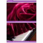 G-AO cas de style européen classique couverture du clavier piano à queue velours or piano ne se fanent pas et s'épaissir (couleur: rouge, taille: 190cm) (Size : Piano Cover+Single Chair Cover)