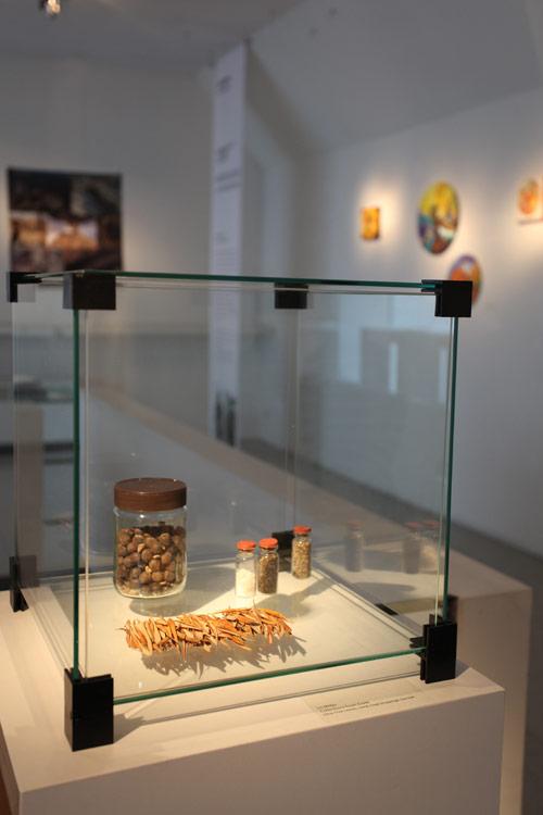 Display by Liz Miller at Artonivo Art Centre, Brugges Belgium