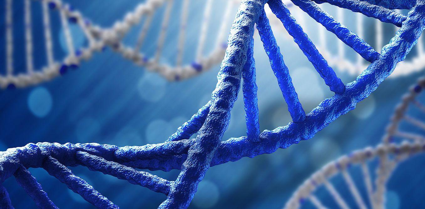 Il DNA è il nuovo archivio dell'umanità