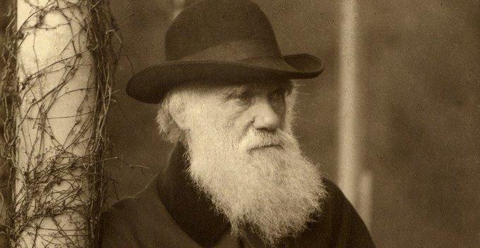 Evoluzione continua: una condanna virtuosa