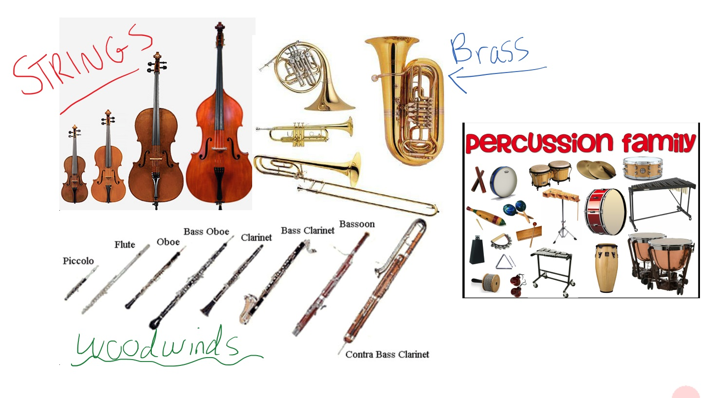 A Beginner S Guide To The Orchestra Part 1