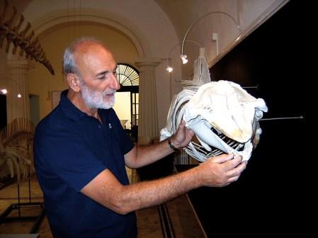 Giorgio Cataldini