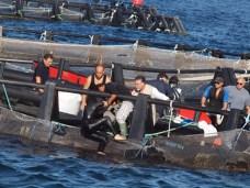 Ingrid Muccitelli dopo il bagno nella grande vasca galleggiante di maricoltura Reho a Torre Suda