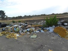 vandalismo e rifiuti luglio 2014 (9)